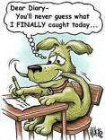 Funny Dog Cartoon256